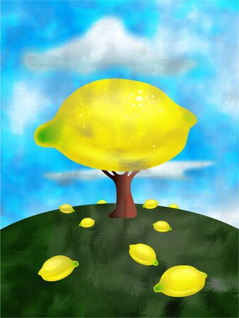 lemon tree: lemon tree Stock Photo