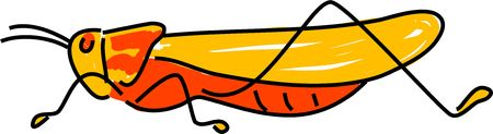 langosta: la langosta insecto aislado en blanco se�ala en el ni�o el arte de estilo