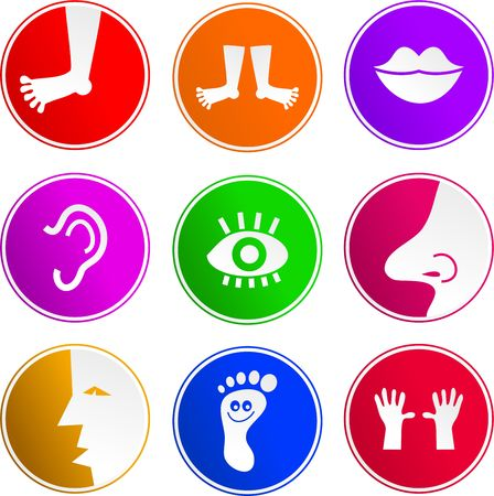 collection of body part sign icons isolated on white