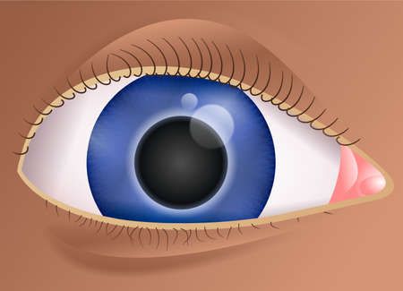 close up illustration of a human eye Stock Illustration - 2506102