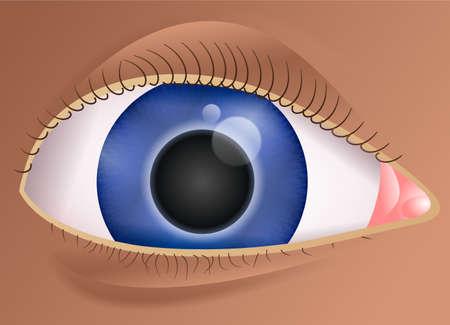 close up illustration of a human eye Stock Illustration - 2506102