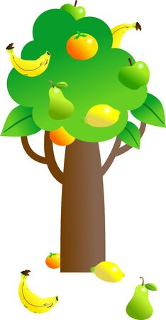it is isolated: tree with a variety of fruit growing on it isolated on white Stock Photo