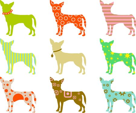 chihuahua: abstract colourful patterned chihuahua wallpaper background design