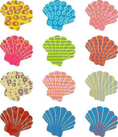 patterned: patterned shells Stock Photo