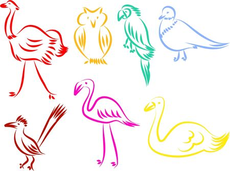 struś: Zestaw kolorowe ikony pojedyncze ptaki linii na białym tle. Zdjęcie Seryjne