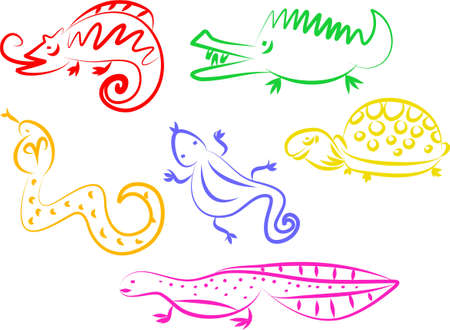 newt: A set of colourful animal line icons isolated on white.