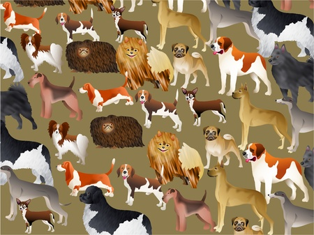 Cute pedigree dog wallpaper background design. Imcludes pekingese, pug, chihuahua, saint bernard, newfoundland, beagle, terrier etc. photo