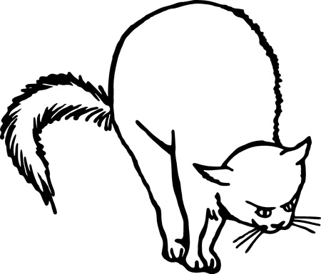 Simple black and white line drawing of a scared cat.