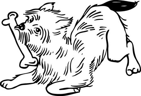 chewing: Simple black and white line drawing of a fluffy dog chewing a bone.
