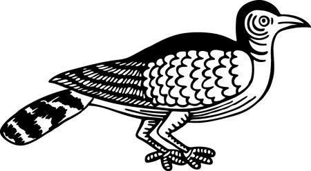rossignol: Simple dessin au trait noir et blanc d'un oiseau rossignol.