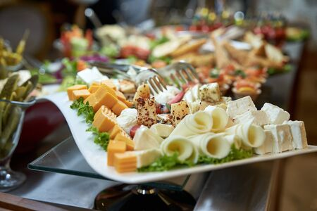 Plate cheese and salad appetizers are different kinds of cheese close-up