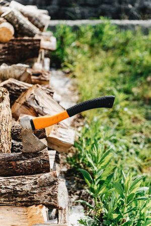 Axe for the crib logs sticks stuck in a tree Standard-Bild