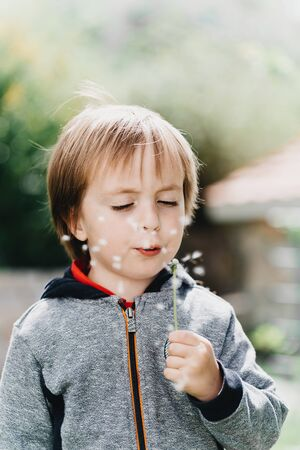 Little boy blows in dandelion on sunlight
