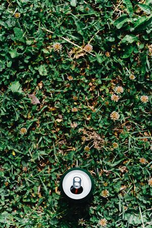 A can of beer against the grass overthe top