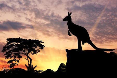 Silhouet van een kangoeroe op een heuvel bij zonsondergang Stockfoto