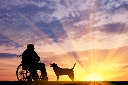 dog wheelchair: Concept of disability and old age. Silhouette of disabled person in a wheelchair with his dog at sunset Stock Photo