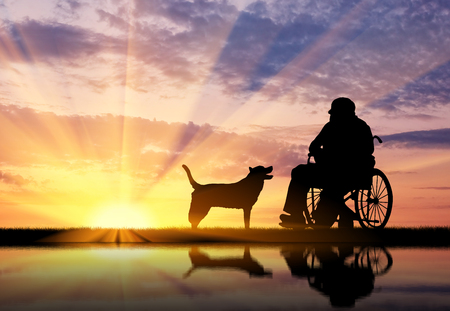 dog wheelchair: Concept of disability and old age. Silhouette of disabled person in a wheelchair with his dog at sunset and reflection in water