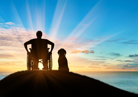 dog wheelchair: Concept of disability and disease. Silhouette of disabled person in a wheelchair with his dog at sunset and reflection in water