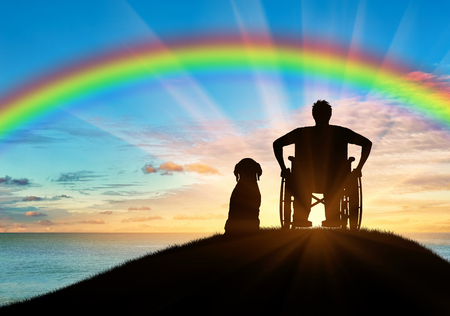 dog wheelchair: Disability. A disabled person in a wheelchair next to his dog on the background of the rainbow and sea sunset