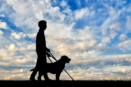 Blind disabled with cane and dog guide walking day. Concept help blind disabilities Stock Photo