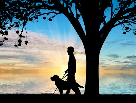 Blind disabled with cane and dog guide walk near sea under tree sunset. Concept help blind disabilities