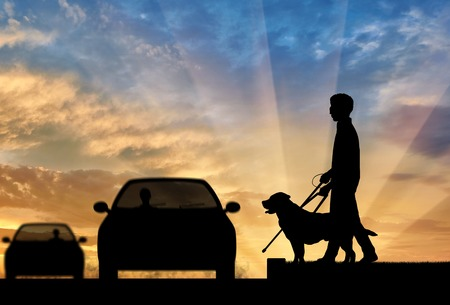 guide dog: Blind man disabilities with cane and dog guide cross road in front of car sunset. Concept help blind people disabilities Stock Photo