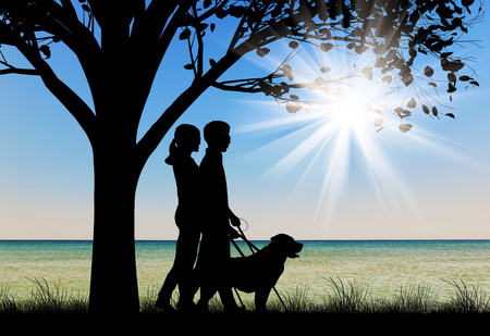 guide dog: Blind people disabilities with cane and dog guide walking under tree on sea day. Concept help blind people disabilities Stock Photo