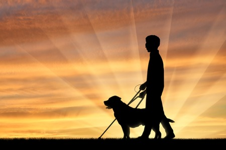 guide dog: Blind disabled with cane and dog guide walking sunset. Concept help blind disabilities Stock Photo