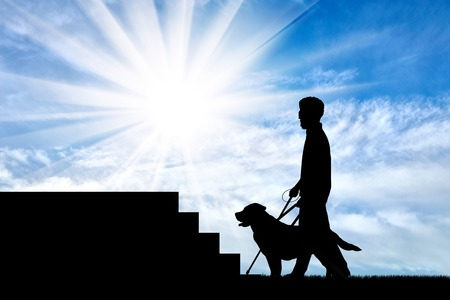 guide dog: Blind disabled person with cane and dog guide stand under stairs day. Concept help blind disabilities