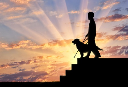 Blind disabled person with cane and guide dog stand on top step on sunset. Concept help blind disabilities Stock Photo