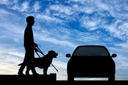 guide dog: Blind man disabilities with cane and dog guide cross road in front of car day. Concept help blind people disabilities