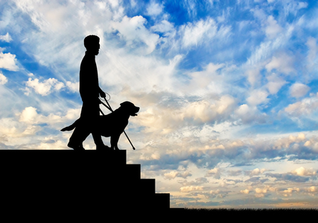 guide dog: Blind disabled person with cane and guide dog stand on top step on day. Concept help blind disabilities Stock Photo