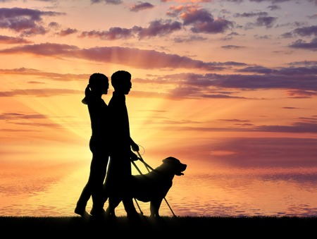 guide dog: Blind people disabilities with cane and dog guide walking on sea sunset. Concept help blind people disabilities