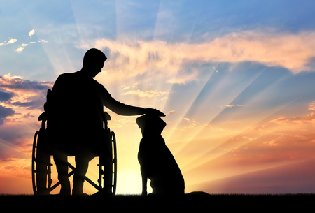 Silhouette of a disabled man in a wheelchair stroking his dog on a sunset background. The concept of the way of life of people with disabilities Stock Photo