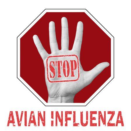 Stop avian influenza conceptual illustration. Open hand with the text stop avian influenza. Global problem