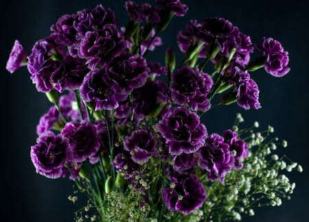 Creative lighting on a boquet of deep purple flowers and babys breath Reklamní fotografie