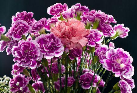 arrangment: A boquet arrangment creativley lit and featuring one pink centerpiece
