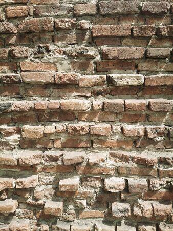 normal school: The Vintage Wall