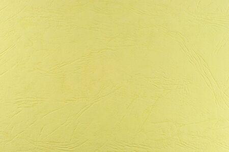 Paper Background - Skin