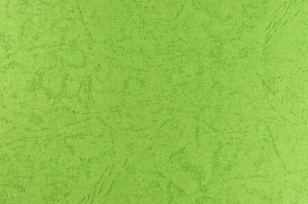 Paper Bacrkgound - Skin Stock Photo