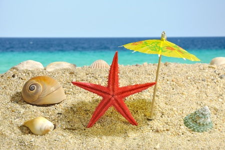 umbrela: Summer scene - starfish catching shadow