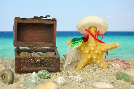 Summer scene #16 - Starfish and the lost treasure