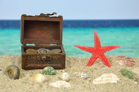 Summer scene #10 - Red Starfish on beach with treasure