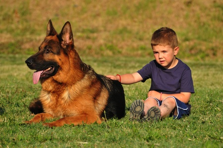 boy and dog photo