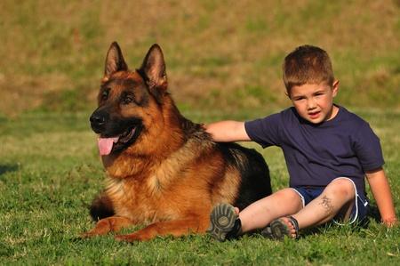 german shepherd: boy and dog