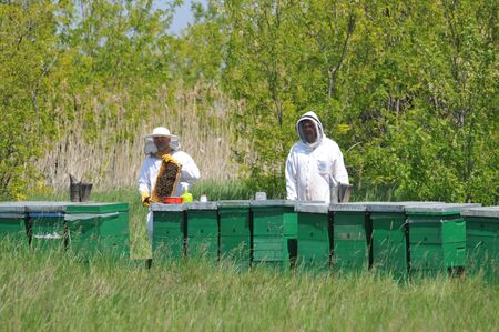 get dressed: Two bee keepers dressed in protective suits get ready to check a bee hive in the country  Stock Photo