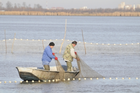 fishermen in the boat doing seasonal fish catch photo