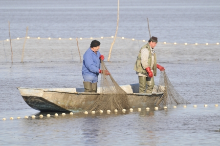 fishermen in the boat doing seasonal fish catch