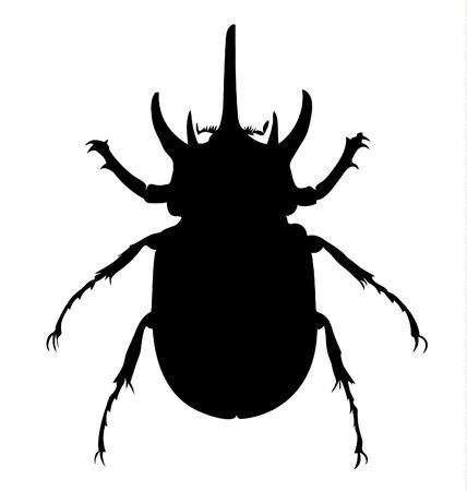 stag beetle: Beetle Silhouette