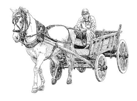 caballos negros: Carro de caballos Sketch